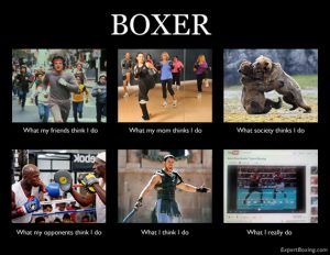 How do you explain boxing to others