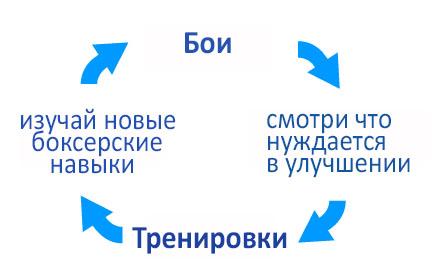 цикл боев и тренировок